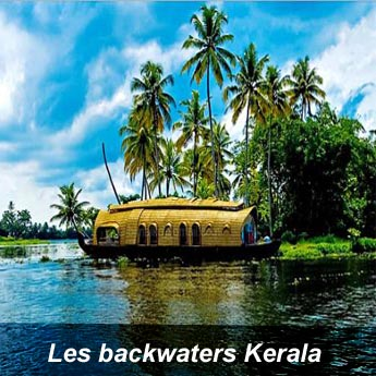 Les Backwaters Kerala